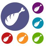 Meat on the bone icons set Stock Images