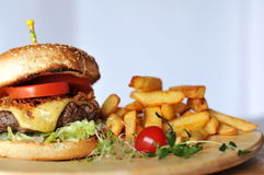 Meat burger with fries. Tasty meat burger with fries Stock Images