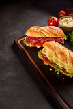 Meat and cheese sandwiches with trimmings Stock Photography