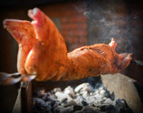 Meat on coals. The rabbit stuffed is fried on coals Stock Photography