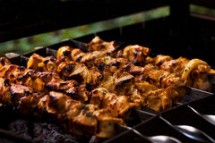 Meat on the coals. Juicy roasted kebabs on the barbeque Stock Photos