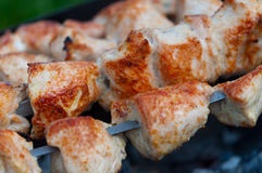 Meat on the coals close-up. Royalty Free Stock Image