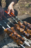 Meat on the coals Royalty Free Stock Photo