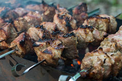 Meat on coals Royalty Free Stock Photography