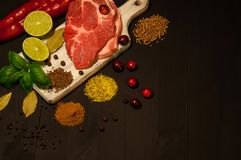 Meat and condiments royalty free stock photography
