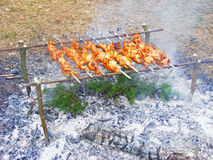 The meat cook up on the embers. / beef skewers grilling on flames Stock Photo