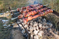 Meat is cooked on charcoal. Barbecue, pork, skewers, brazier, coals, fire. Hot meat cooking. Meat in the nature Stock Image