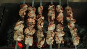 Meat cooked on coals stock video footage