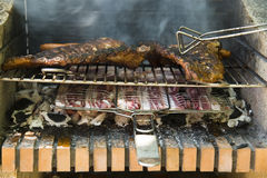 Meat cooking on charcoal grill Stock Image