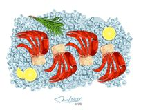 Meat crab with rosemary and lemon on ice cubes. Vector illustrationin cartoon style. Seafood product design. Inhabitant. Meat crab with rosemary and lemon on ice Stock Photography