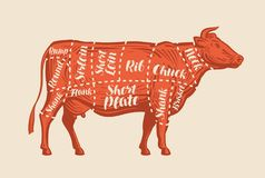 Meat cut charts. Cow, butcher shop, beef. Vector illustration stock illustration