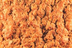 Meat cutlet ready with juice. Fast Food Top View stock photo