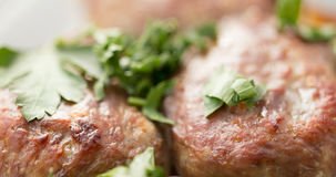 The meat cutlets strewed with green leaves of parsley Royalty Free Stock Images