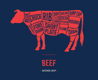 Meat cuts. Scheme of beef. Royalty Free Stock Photography