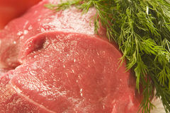 Meat with dill Royalty Free Stock Photo