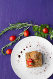 Meat dish decorated with tomatoes and herbs Stock Images