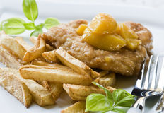 Meat dish with fries Royalty Free Stock Photos
