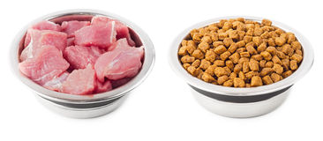 Meat and dry food for pets Royalty Free Stock Photos