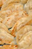 Meat dumpling background. Meat fired dumpling for dinner meal Royalty Free Stock Photos
