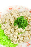 Meat dumplings closeup Royalty Free Stock Photos