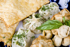Meat dumplings and meat in a test to fry royalty free stock photo