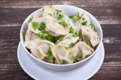 Meat Dumplings - russian boiled pelmeni Stock Photography