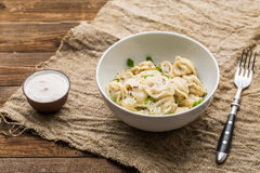 Meat dumplings - russian pelmeni, ravioli with meat on a white plate Royalty Free Stock Photography