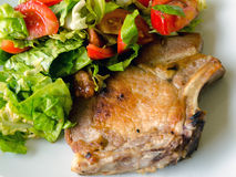 Meat entree and salad royalty free stock photo