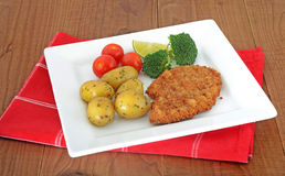 Meat escalopes on white plate Royalty Free Stock Photography