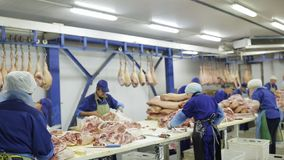 The meat factory is preparing fresh meat for delivery to stores. stock video footage