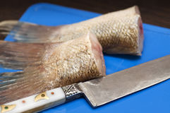 Meat of fish on a chopping board Stock Photography
