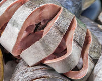 Meat fish Seafood on ice Stock Photography