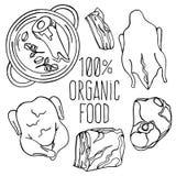 MEAT FOOD Carnivore Diet Organic Vector Illustration Set. MEAT FOOD Carnivore Diet Organic Healthy Proper Nutrition Mind Eating Vector Illustration Set royalty free illustration