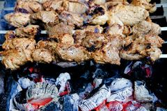 Meat, Food, Grilled Food, Skewer stock images