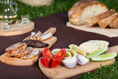 Meat food from picninc basket on grass. In the garden stock photography