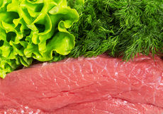 Meat fresh raw beef, dill and lettuce. Meat fresh raw beef, dill and lettuce background Royalty Free Stock Photography