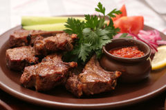 Meat with fresh vegetables Stock Image