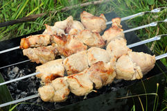 Meat fried on a brazier Royalty Free Stock Images
