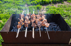 Meat is fried on skewers on the grill Stock Photos