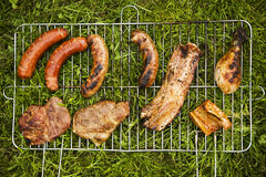 Meat on grass top view stock image