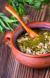 Meat and greens soup Stock Images