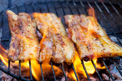Meat on a grill Stock Photography
