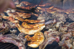 Meat on the grill Stock Image