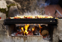 Meat grill with burning wood Stock Photography