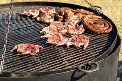 Meat on grill. Chicken and sausages on giant Royalty Free Stock Photography