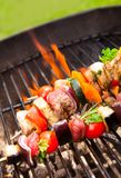 Meat on grill. Fresh meat prepared on grill Royalty Free Stock Image
