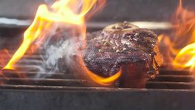 Meat on the grill. Lots of fire. Slow motion, close-up.  stock footage