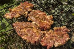 Meat for the grill Royalty Free Stock Photos