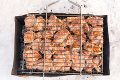 Meat on a grill with smoke. Flavorful meat on the grill with smoke in winter forest Stock Photography