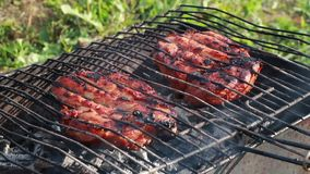 Meat grilled on the grid. Food for barbecue party